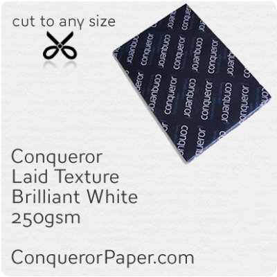 PAPER - Laid.10301, TINT:BrilliantWhite, FINISH:Laid, PAPER:250gsm, SIZE:SRA2 - 450x640mm, QTY:100Sheets, WATERMARK:No