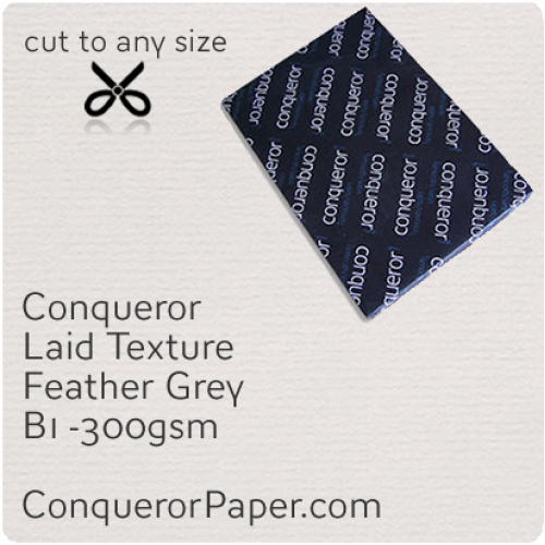 PAPER - Laid.42861, TINT:Feather Grey, FINISH:Laid, PAPER:300gsm, SIZE:B1-700x1000mm, QTY:100Sheets, WATERMARKED:No