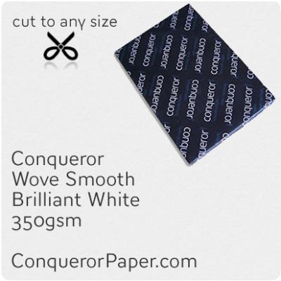 PAPER - Wove.47813, TINT:BrilliantWhite, FINISH:Wove, PAPER:350gsm, SIZE:450x640mm, QTY:100Sheets, WATERMARK:No