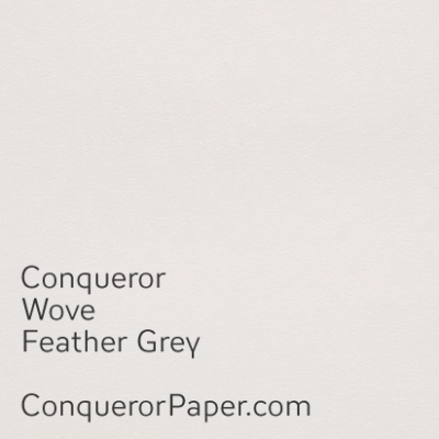 Feather Grey Wove