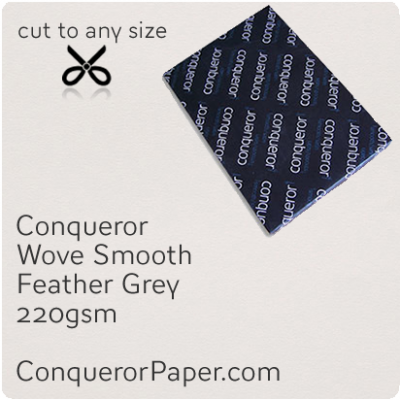 PAPER - Wove.42869, TINT:Feather Grey, FINISH:Wove, PAPER:220gsm, SIZE:B1-700x1000mm, QTY:100Sheets, WATERMARKED:No